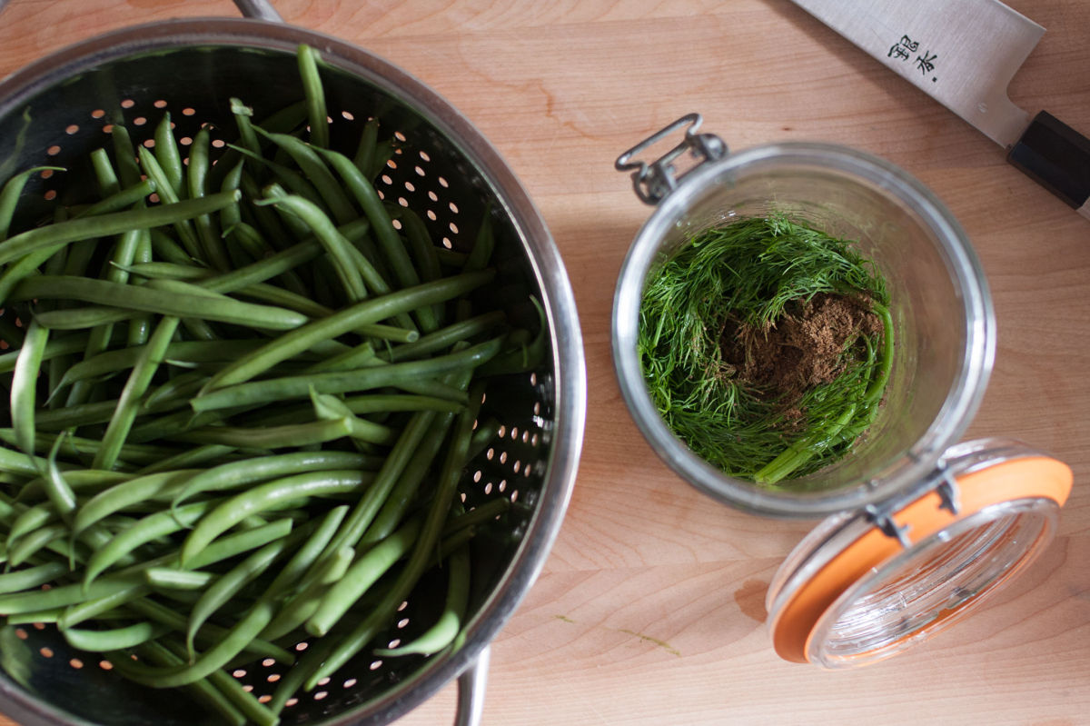 Green beans in a colander, ready for pickling