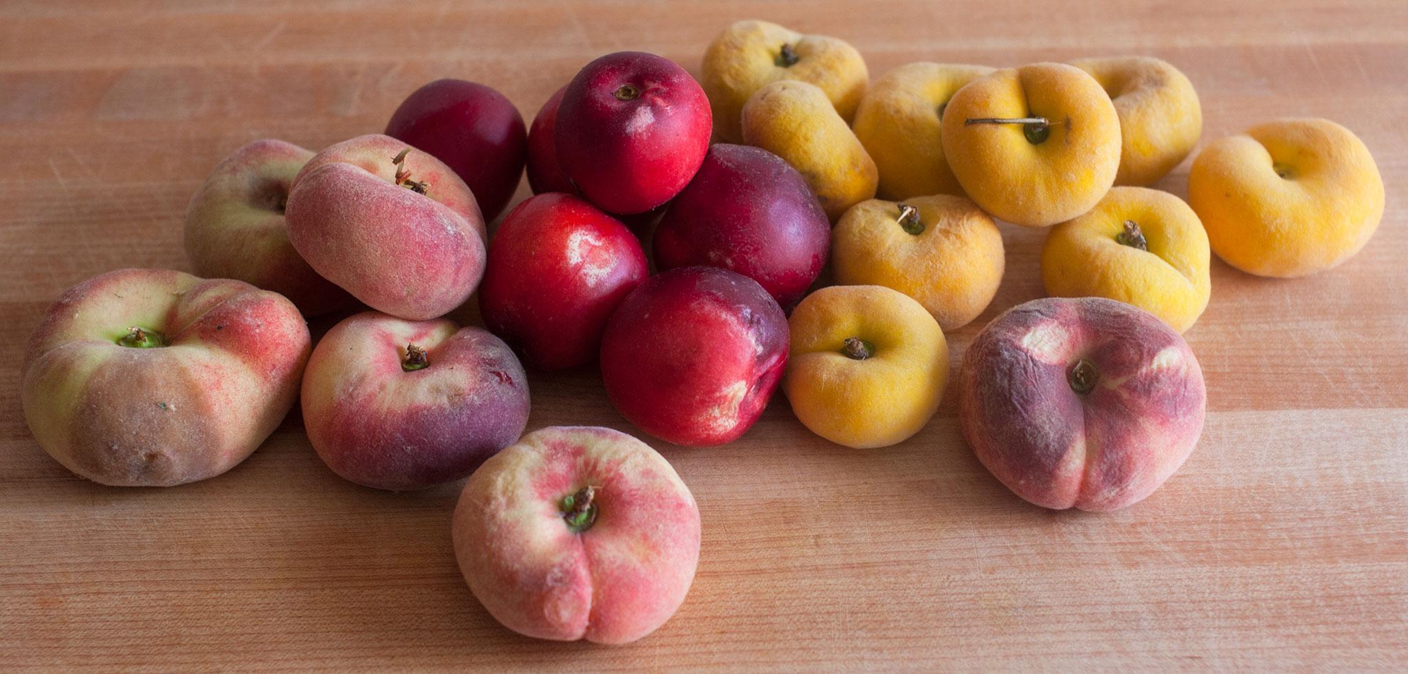 Peach-and-nectarine-jam_0004_web1