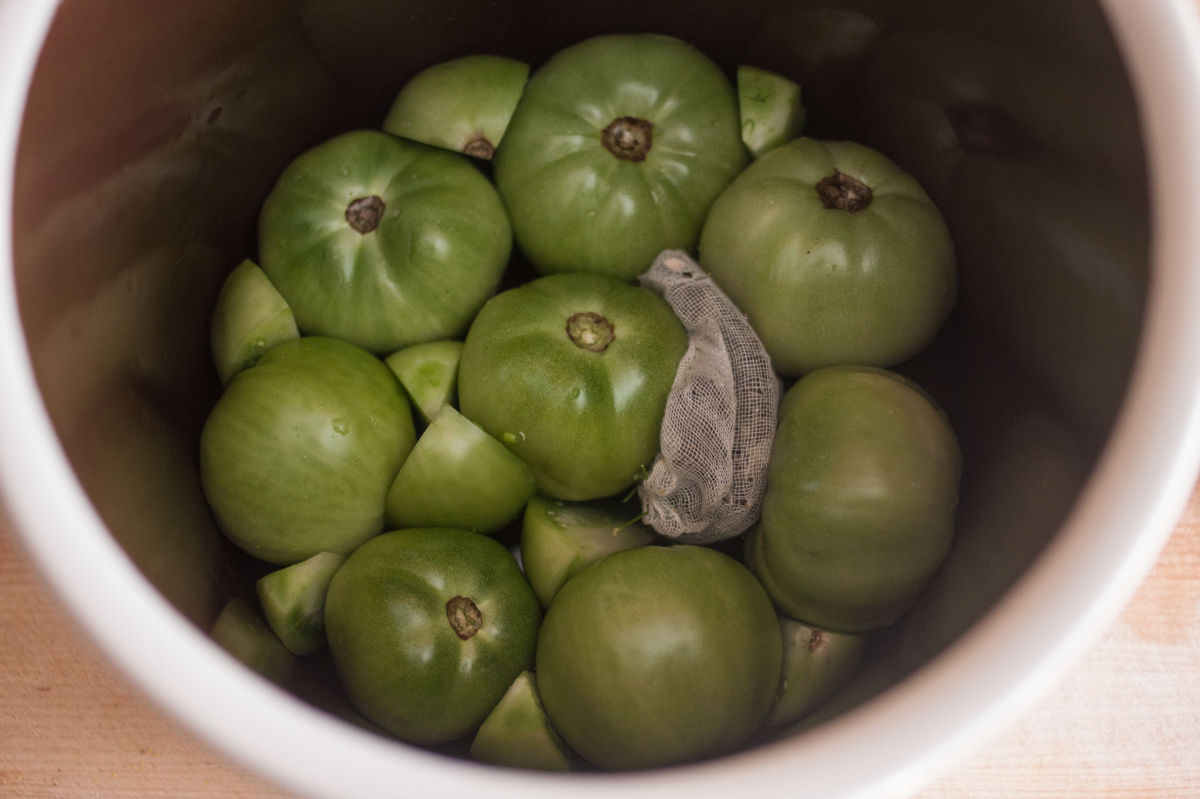 Green tomatoes in a fermentation crock