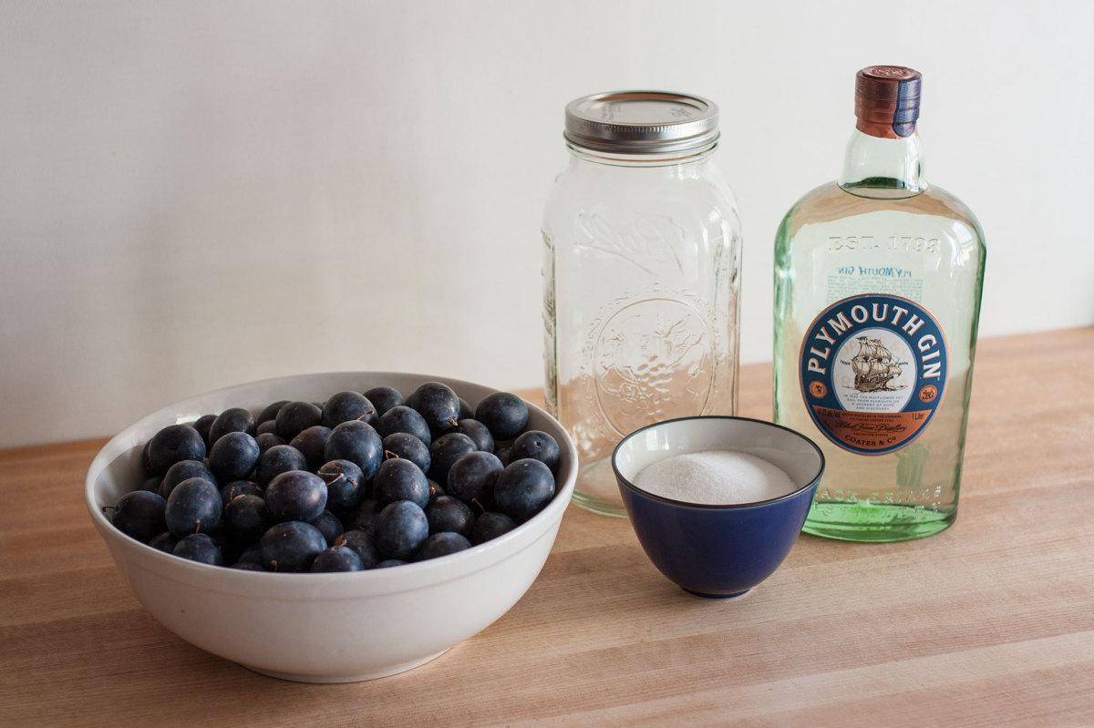 Preparing to make Damson gin